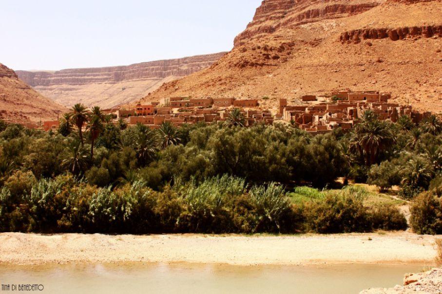 MAROCCO: le foreste di Cedri, il deserto arancione