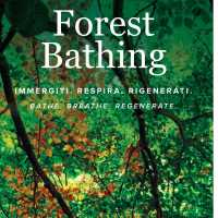 FOREST BATHING PATHS - Oasi Zegna