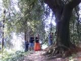 Bioenergetic Park of Villa Lina - Ronciglione - Viterbo (Italy)