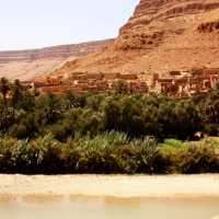 MOROCCO: Cedar Forests, Orange Desert