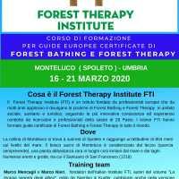 FORMAZIONE GUIDE DI FOREST BATHING FTI - ITALIA