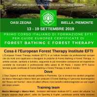 FORMAZIONE GUIDE DI FOREST BATHING CERTIFICATE - ITALIA